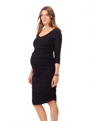 Isabella Oliver Eldon Maternity Dress