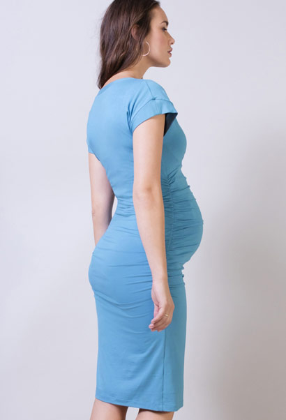 Isabella Oliver Halstead maternity dress